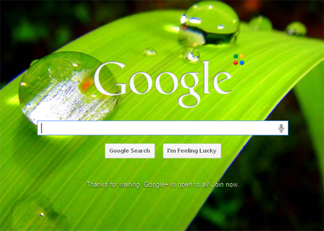 Using Google To Improve Your English