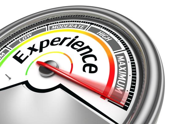 Jobseeking Phrases Describing Experience