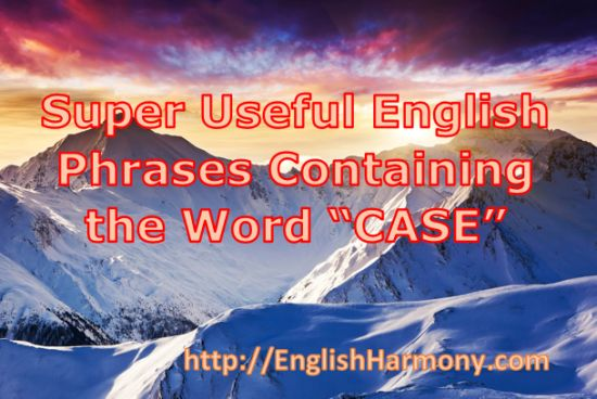 How to use the word CASE in a sentence