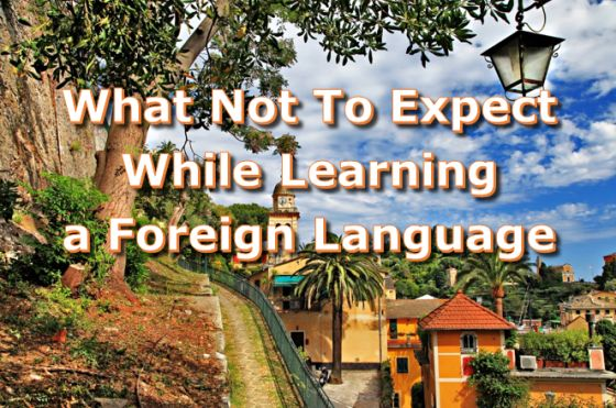 What not to expect when learning foreign language